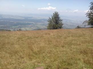 Vedere de pe dealul Prisacai