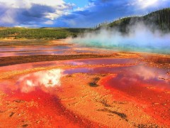 Cel mai mare parc national din lume: Yellowstone